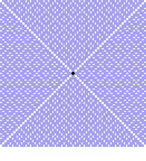lace calico