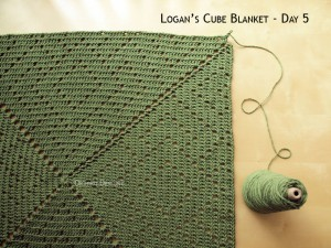 Blanket Projects – Logan's Cube Blanket, Day 5